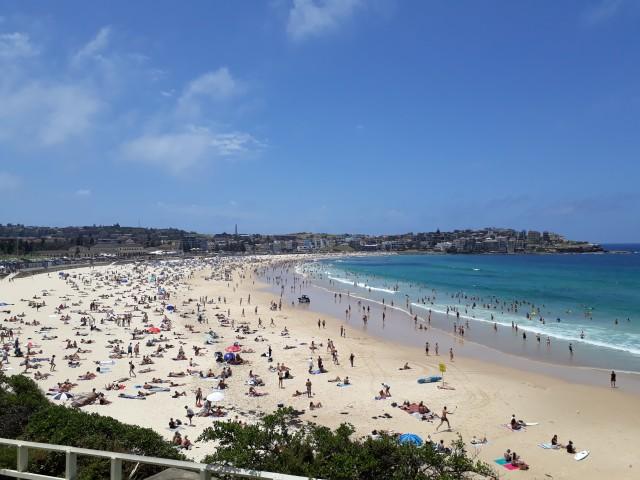 Küstenweg bei Sydney in Australien