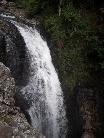 Springbrook Nationalpark