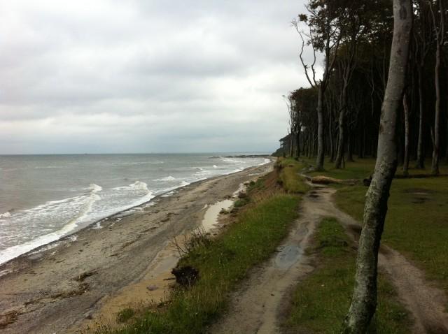 Ostseeküstenradweg bei Heiligendamm